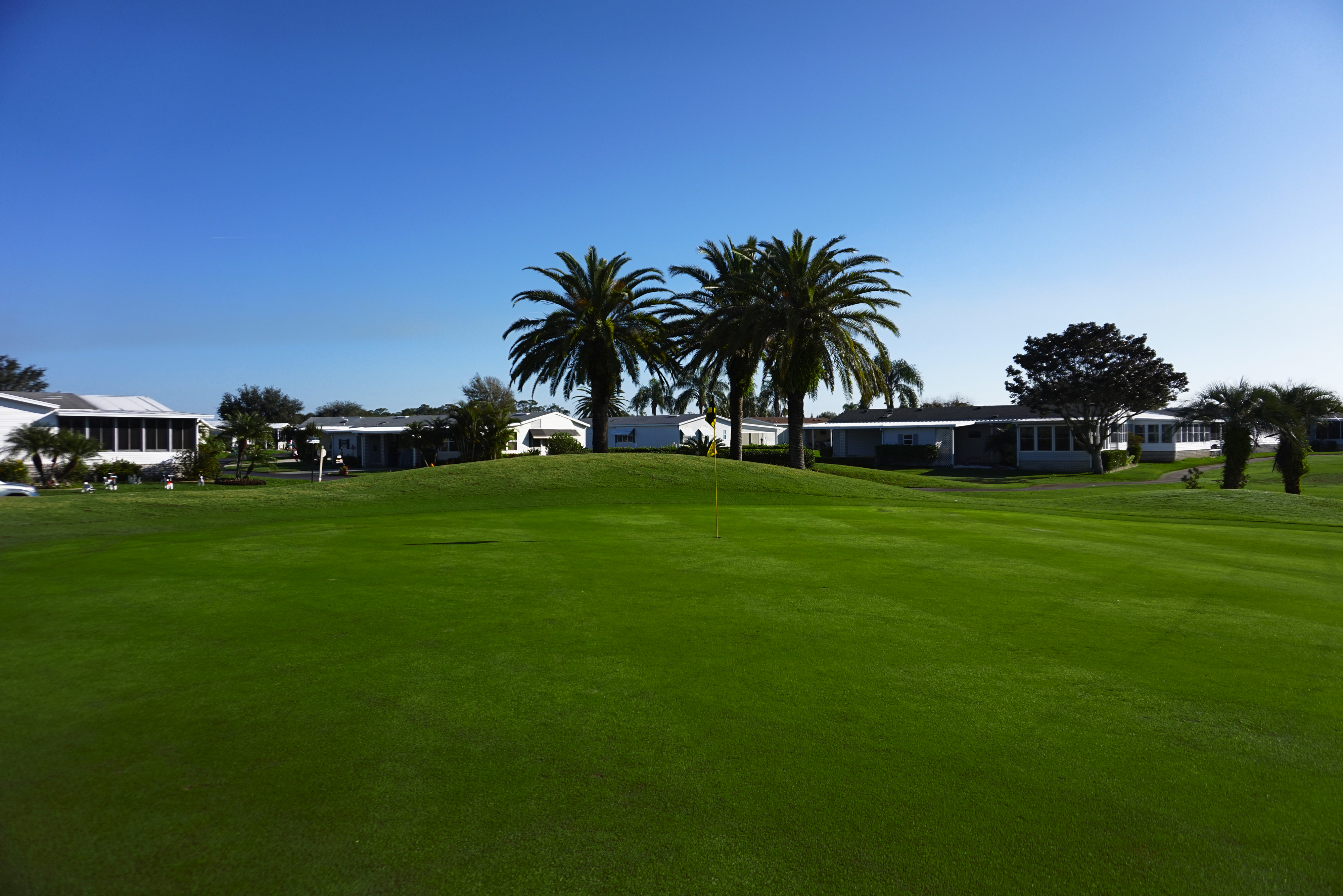 winter haven golf club